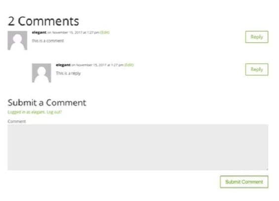 Comments Module | Divi Builder